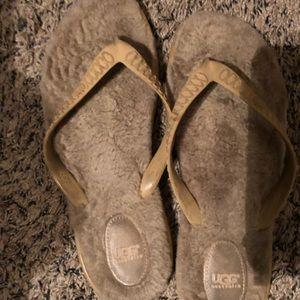 Women's Ugg Flip Flops